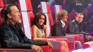 2012 France The Voice, la plus belle voix