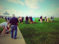 Good Dog Goods Martha's Vineyard Dog Parade Oak Bluffs Ocean Park 2015